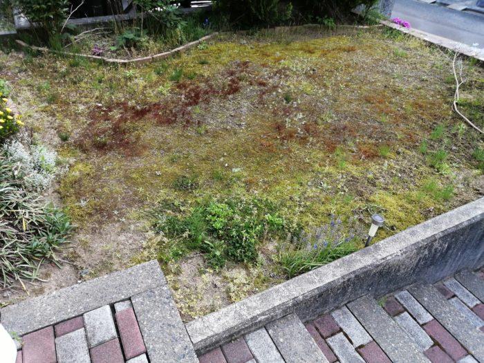 人工芝を敷く庭